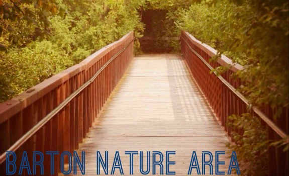 7-things-to-do-in-ann-arbor-this-summer-Barton-Nature-Area