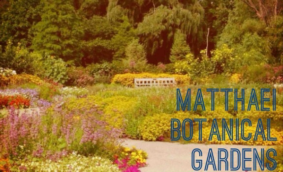 7-things-to-do-in-ann-arbor-this-summer-Matthaei-Botanical-Gardens